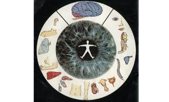 my iridology image 5